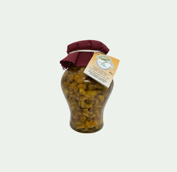 lafungheria-funghi-finferli